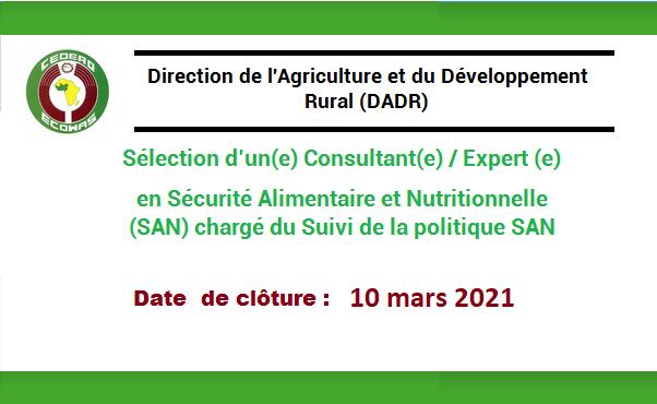 Consultant(e) / Expert (e) en Sécurité Alimentaire et Nutritionnelle (SAN) chargé du Suivi de la politique SAN