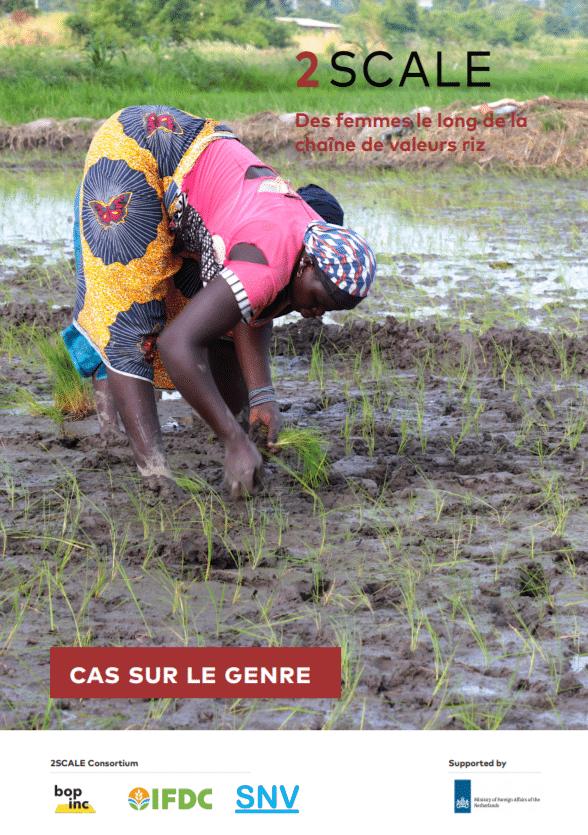 Etudes de cas: Intégration du genre dans les partenariats d'agrobusiness dans le cadre du programme 2SCALE