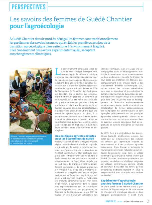 Les savoirs des femmes de Guédé Chantier pour l'agroécologie