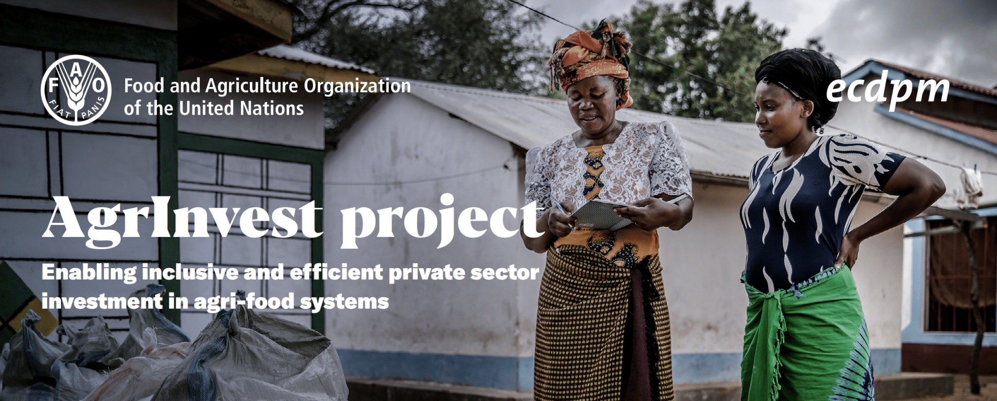 AgrInvest: Enabling inclusive and efficient private sector investment in agri-food systems
