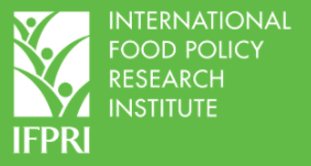 Etude - Ethiopia's social safety net effective in limiting COVID-19 impacts on rural food insecurity
