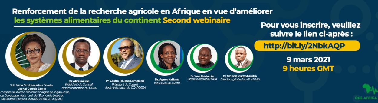 Webinaire : Renforcer la recherche et le développement agricoles en Afrique pour améliorer les systèmes alimentaires africains