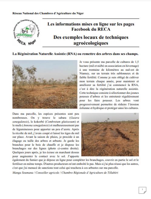 Note technique - Exemples locaux de techniques agroécologiques au Niger