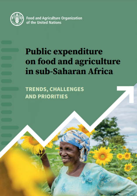 Rapport - Public expenditure on food and agriculture in sub-Saharan Africa