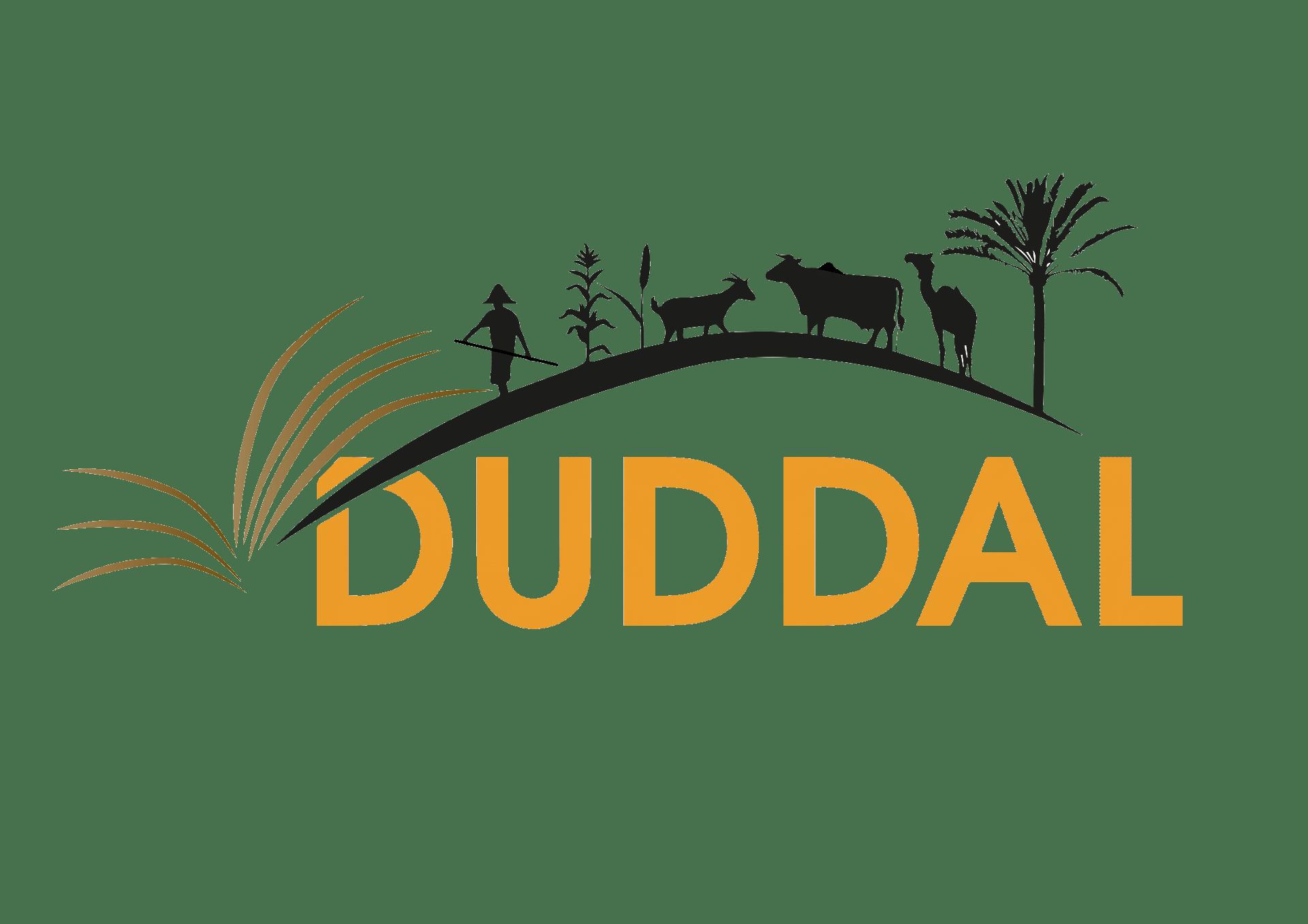 Bibliothèque numérique Duddal
