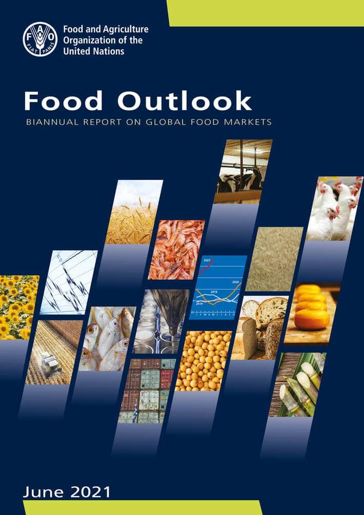 La FAO analyse l'augmentation du prix des denrées alimentaires