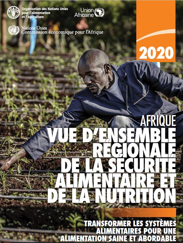 Rapport : Vue d'ensemble régionale de la sécurité alimentaire et la nutrition en Afrique