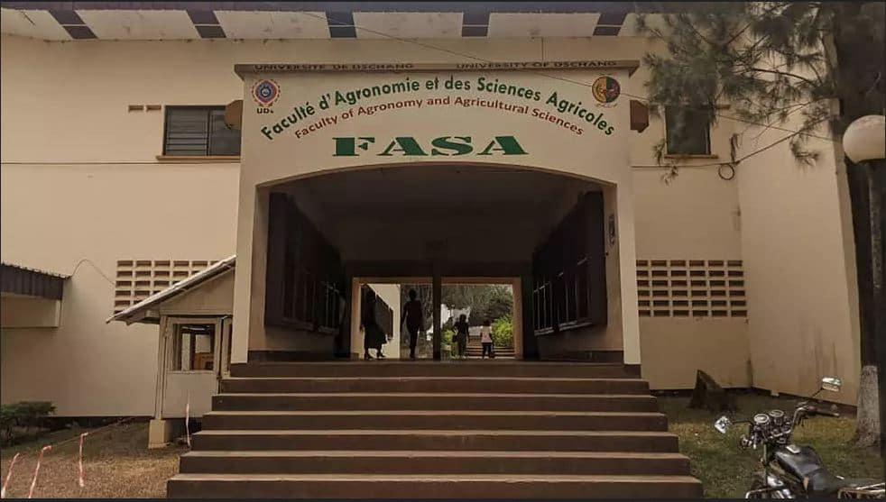 Entrepreneuriat agricole en Afrique