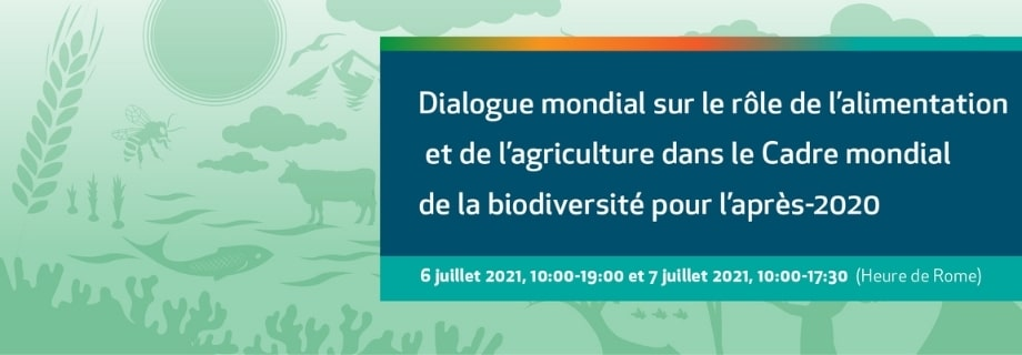 Dialogue mondial sur le rôle de l'alimentation et de l'agriculture dans le Cadre mondial de la biodiversité pour l'après-2020
