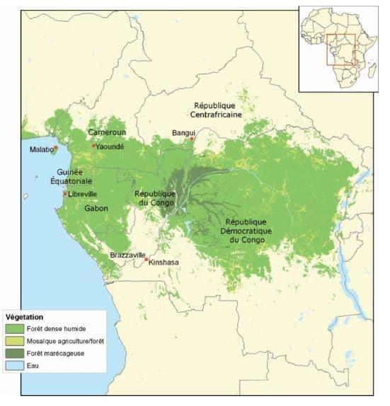 Géopolitique des forêts d'Afrique centrale