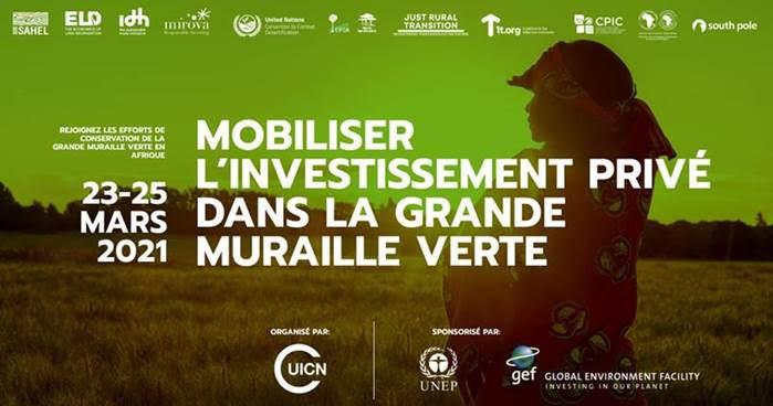 Mobiliser l'investissement privé dans la grande muraille verte
