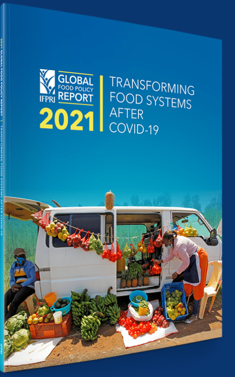 Report - Global food policy report 2021