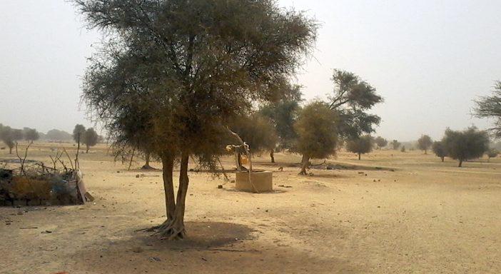 Bulletin de surveillance pastorale de la zone agropastorale du Ferlo