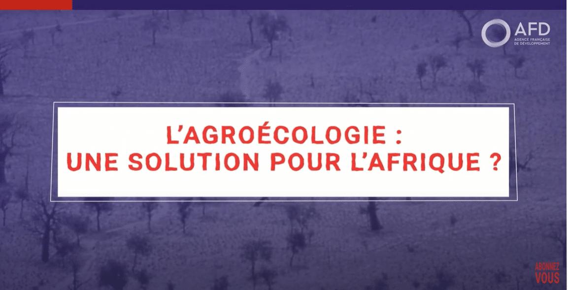 Vidéo : Une intensification agroécologique au Sahel est-elle possible ?
