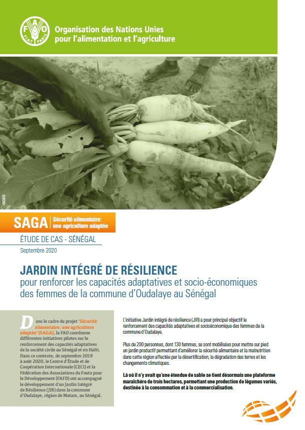 Etude de cas : Jardin intégré de résilience pour renforcer les capacités adaptatives et socio-économiques des femmes au Sénégal