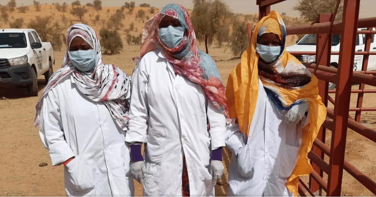 Des femmes vaccinatrices de bétail à Bougamara, un tabou brisé