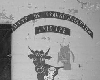 Sénégal, 2006 (© A-L. Constantin, CFSI)