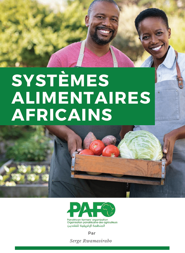 Rapport : Systèmes alimentaires Africains
