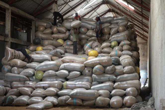 Au Nigeria, le difficile chemin vers l'autosuffisance en riz