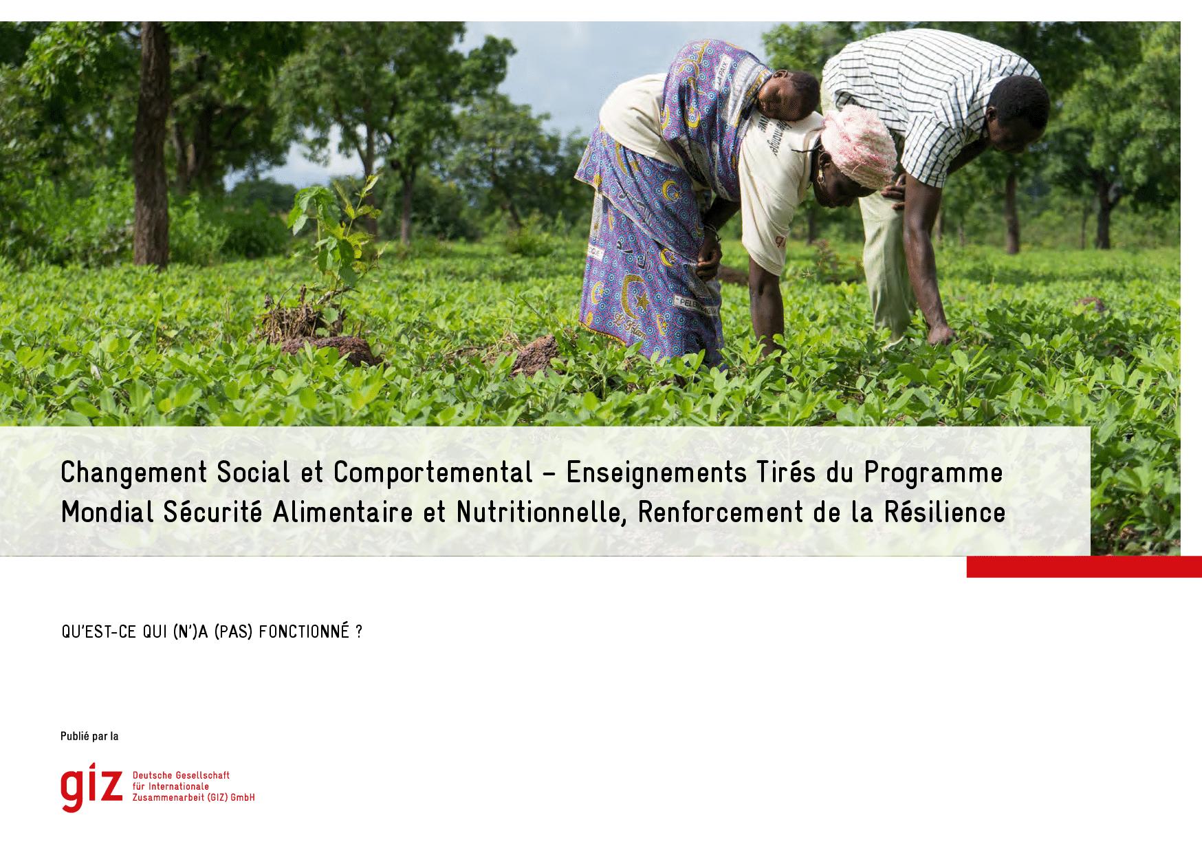 Changement Social et Comportemental – Enseignements Tirés du Programme Mondial Sécurité Alimentaire et Nutritionnelle, Renforcement de la Résilience