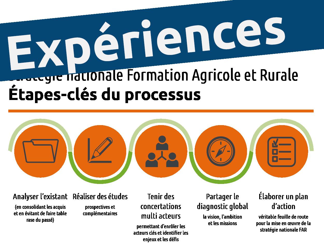 Stratégie nationale formation agricole et rurale : où en sommes-nous ? Les cas du Bénin, Burkina Faso, Cameroun et Togo
