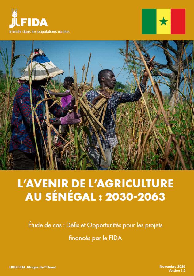 Etude de cas : l'avenir de l'agriculture au Sénégal : 2030-2063