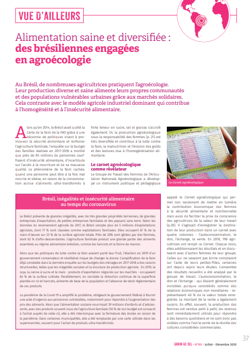 Vue d'ailleurs : Alimentation saine et diversifiée : des brésiliennes engagées en agroécologie