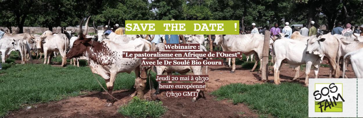 """""""Le pastoralisme en Afrique de l'Ouest"""". Avec le Dr Soulé Bio Goura"""