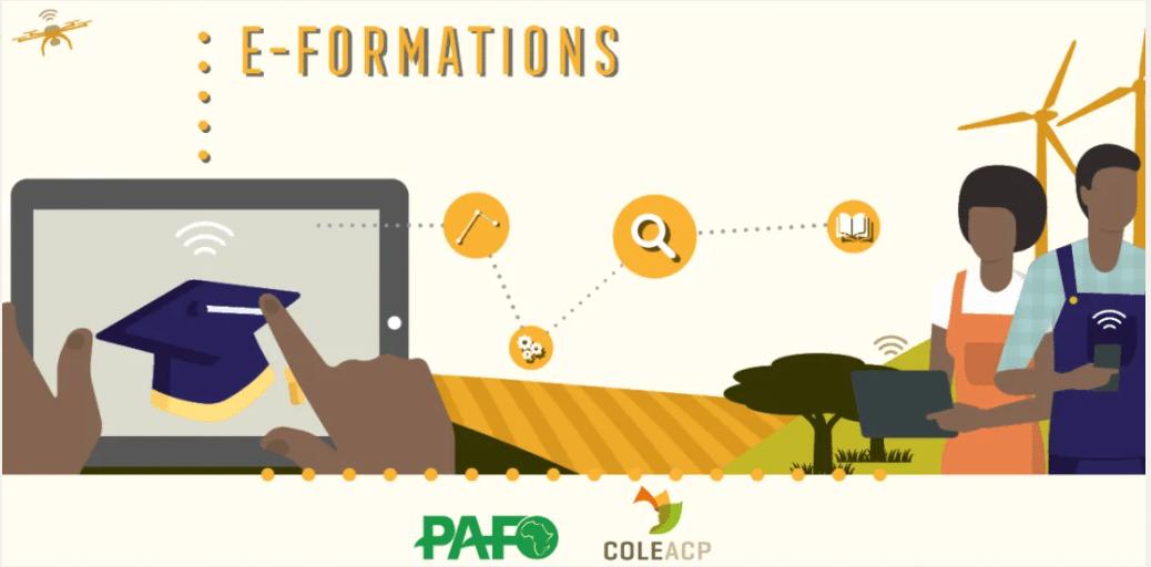 Série de webinaires Pafo-Coleacp de quatre semaines en avril – protection des cultures et l'usage sécurisé des pesticides