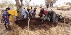 Les femmes organisent l'agroécologie pour la résilience au Sahel