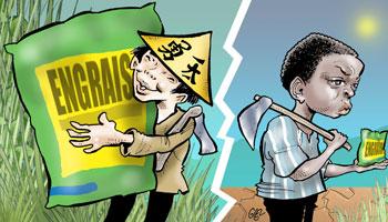 Jeune Afrique : Agriculture africaine : place aux intrants !