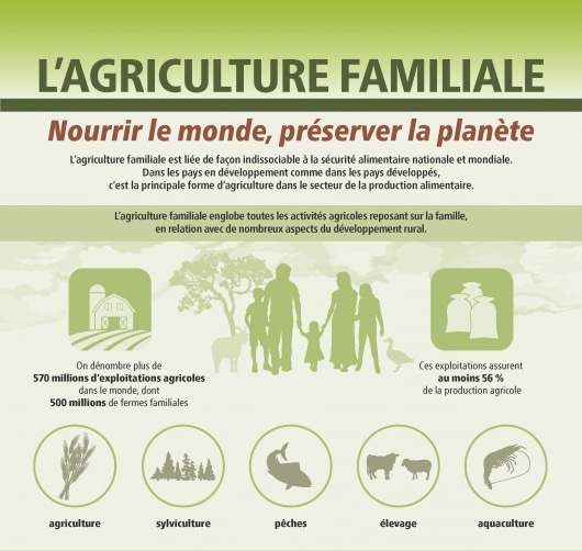 What do we really know about the number and distribution of farms and family farms worldwide?