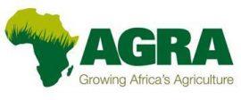 Rapport AGRA: l'industrie des semences africaine est désormais dominée par des start-up locales