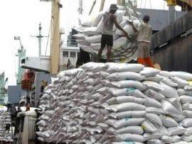 Les pays d'Afrique de l'Est tentent de faire barrage aux importations de riz asiatique