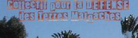 Communiqué du Collectif TANY: Pour une nouvelle politique de gestion des terres malgaches