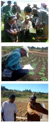 Note d'analyse FERT sur l'expérience des paysans relais