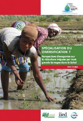Rapport de synthèse GWI: Spécialisation ou diversification ? Perspectives divergentes sur la riziculture irriguée par trois grands barrages dans le Sahel