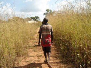 Rapports d'étude: La recherche et les politiques pour l'adaptation au changement climatique dans le secteur de l'agriculture en Afrique de l'Ouest