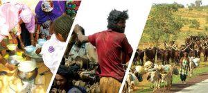 """Actes du colloque national """"Pour la création d'un environnement propice au développement durable du pastoralisme au Mali"""""""