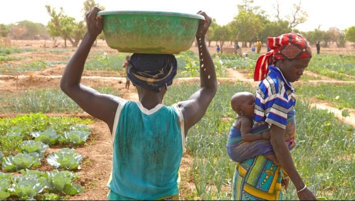 Rapport:  Crise alimentaire, genre et resilience au Sahel : Enseignements tirés de la crise de 2012 au Burkina Faso, Mali et Niger