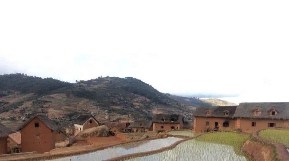 Rapport de capitalisation: Identification, formation et accompagnement des leaders paysans de proximité
