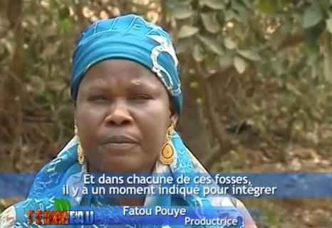 Reportage vidéo du magazine Terre Eau (Enda Pronat): expériences en agriculture biologique (Les Niayes, Sénégal)