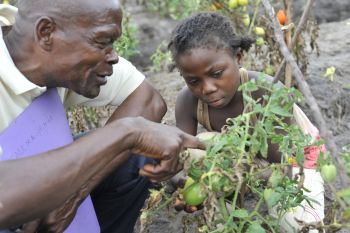 """Recueil d'initiatives : Making Agriculture """"Cool"""" for Youth"""
