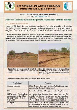Fiche sur les techniques innovantes d'agriculture intelligente face au climat au Sahel