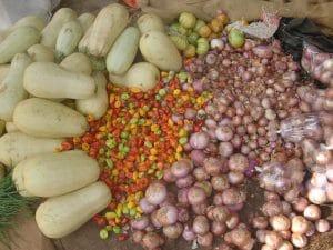 Communiqué du collectif TANY: Agriculture familiale paysanne ou agrobusiness : un choix de projet de société