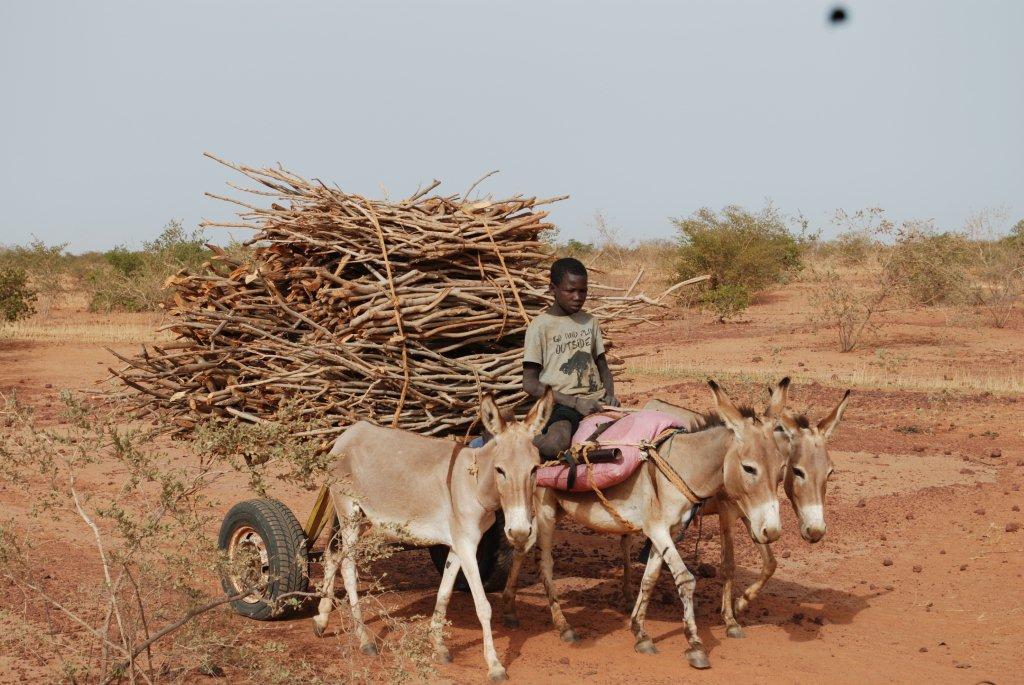 Making Sense of Funding and Implementation of Sahel Strategies