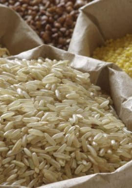 Passerelles : La sécurité alimentaire et le commerce en Afrique