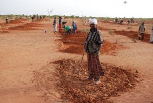 News: Overcoming Obstacles to Agroecology
