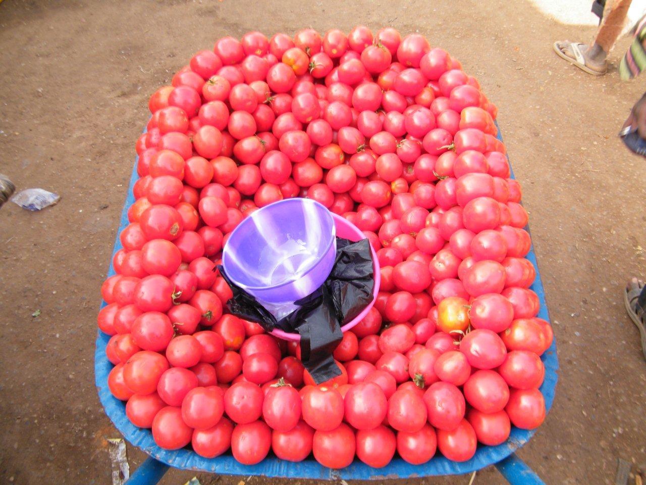 23 septembre 2014 (Paris) : Développement agricole en Afrique et en Asie : faut-il continuer de privilégier les petites exploitations ? (Fondation FARM)