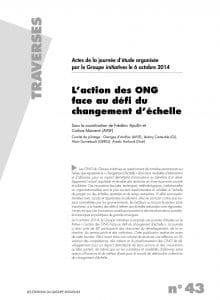 L'action des ONG face au défi du changement d'échelle